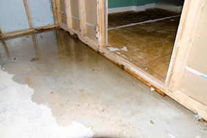 Flooded basement of home needing Water Damage Service in Pekin IL